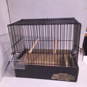 JPGC-Jaula de concurso para pájaros de postura grande.